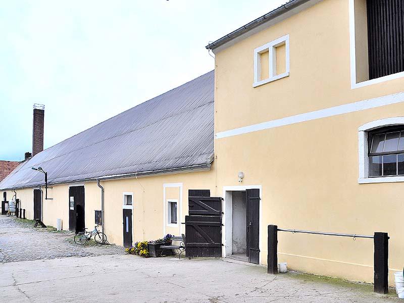 Reitverein-Großhennersdorf17